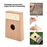 Dilwe DIY Thumb Piano,10 Keys Kalimba Thumb Piano Finger Piano Wood Musical Instrument