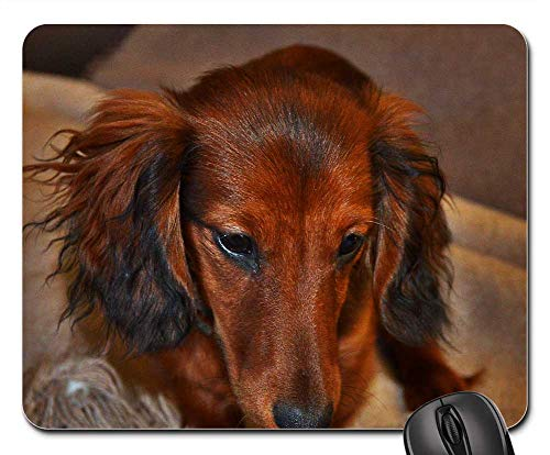 Mouse Pads - Long Hair Dachshund Brown View Small Dog