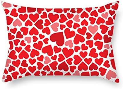 Amazon.com: RISEE Love Christmas Pillow Cases Best For Sofa ...
