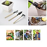 DINDANG Mini Gardening Tools Three Piece Small