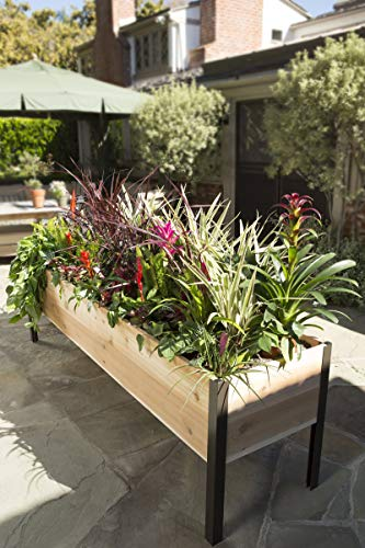 Gardener s Supply 2 Ft x 8 Ft Raised Garden Bed Elevated Cedar Planter Box Standing Garden 24 x 96