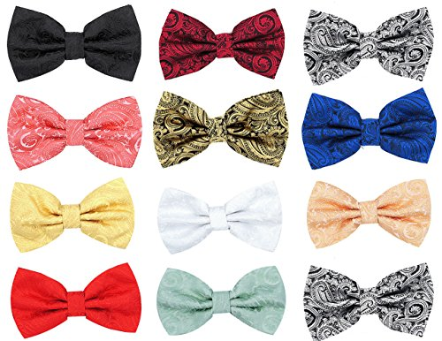 Oliver George Mens Paisley Pre-Tied Bow Tie