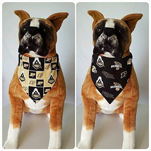 Reversible Bandana, Made With Purdue University Fabric, Indiana, Boilermakers, Scarf, Dog, Cat, Pet, Slip On Over The Collar, (Does Not Tie) 2 in one