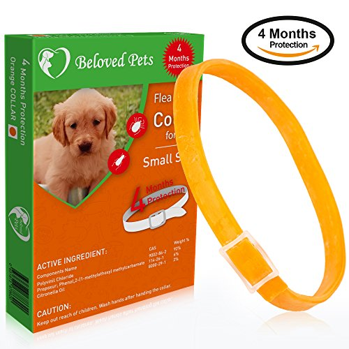 Beloved Pets Flea and tick Collar 100% Effective - Flea Control Collar for Dogs and Puppies - Unique formula for quick and long lasting protection - Flea and tick prevention for Dogs (Puppies, Orange)
