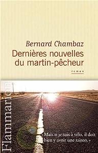 vignette de 'Dernières nouvelles du martin-pêcheur (Bernard Chambaz)'