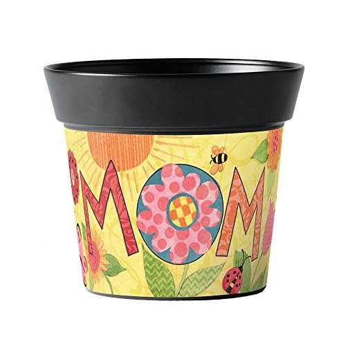 Studio M Handcrafted Garden Art Metal Flower Pot, 5.5-Inches Tall, Wow Mom by Susan Winget