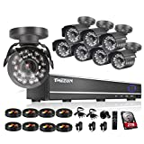 TMEZON 16CH Channel Video DVR CCTV Security Cameras System 8x 800tvl IR Cut Outdoor Bullet Hi-Resolution Surveillance Cameras Black Smart Phone View with 2TB HDD