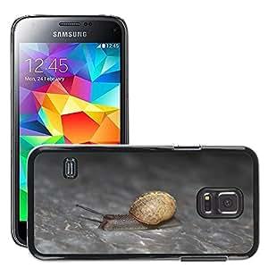 Etui Housse Coque de Protection Cover Rigide pour // M00135408 Caracol naturaleza animal // Samsung Galaxy S5 MINI SM-G800