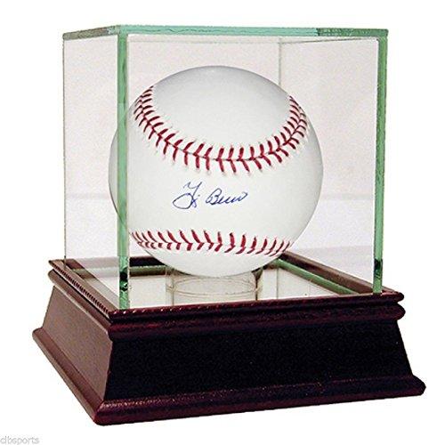 Yogi Berra Autographed Signed MLB Baseball Ny Yankees Auto Steiner Sports Oml Ws