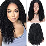 Long Curly Wigs for Black Women 20 Inch Afro Curly Wig High Density Natural Black Color Side Part Synthetic Full Wigs with Free Wig Cap by Fani