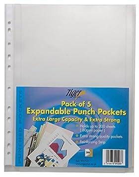 50 x A4 grande plegable plástico laparotomía expansión carteras fundas de archivos: Amazon.es: Oficina y papelería