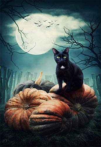 Laeacco Halloween Black Cat Background 5x7ft Photography Backdrop Pumpkins Wooden Fence Trees Ghost Full Moon Night Creepy Photo Shooting Studio Prop
