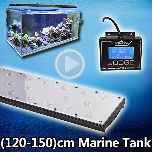 Best Led Light For Saltwater Tank - 8
