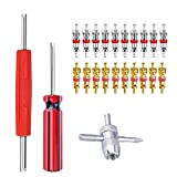 Riseuvo Valve Core Tool Set 20Pcs Valve Cores, 4-Way Valve Tool, Dual Single Head Valve Core Remover, Tire Repair Tool