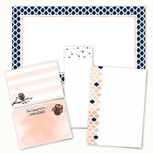 Owlsome Adhesive Sticky Note Pack - 5 pads - 50 sheets / pad