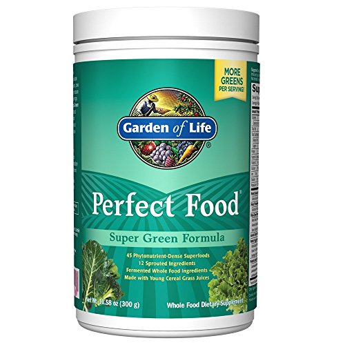 Garden Of Life Whole Food Vegetable Supplement Perfect Food Green Superfood Dietary Powder 300g