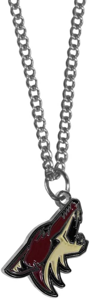 NHL Siskiyou Sports Fan Shop Arizona Coyotes Chain Necklace with Small Charm 22 inch Team Color