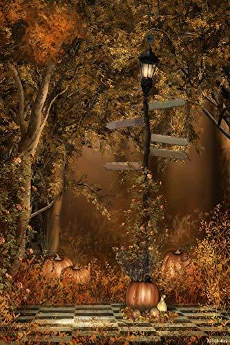 Tree Grass Lantern Light 6' W x 9' H Video Studio Background Digital Printed Seamless Photography Background RKA Series Photographic Backdrop ()
