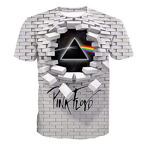 2019 Creative Wall Pink Floyd 3D Printed Round Neck Loose Short-Sleeved Large Size Shirt t-Shirt (XXL)