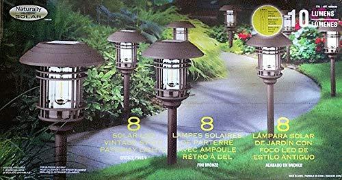 Buy Solar Landscape Lights in US - 4