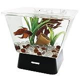 Tetra Betta Fish Aquarium Kit, 1 Gallon Cubed Fish Tank with Stand, Includes 4 LED Lights