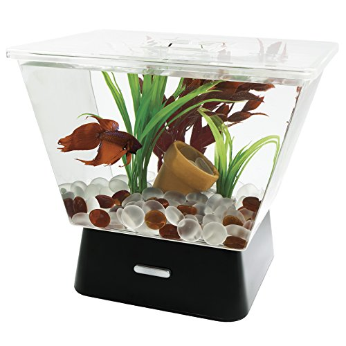 Tetra LED Betta Tank With Base Lighting, 1-Gallon, 7.25 x 9.5 x 8.5