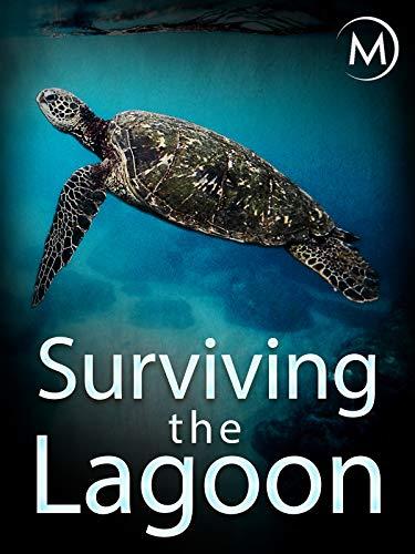 Surviving the Lagoon ()