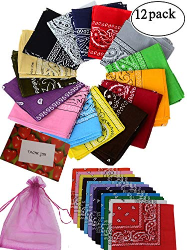 BSLINO One Dozen/12pcs Assorted Bandanas 22X22 Inch 100% Cotton Novelty Double Sided Print Paisley Cowboy Bandana Party Favor Scarf Headband Handkerchiefs