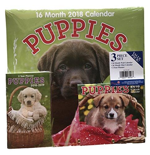 2018 16 Month Calendars Bundle of Three Puppy Themed Calendars and Planner Set