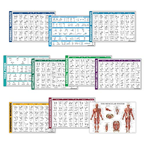 """10 Pack - Exercise Workout Poster Set - Dumbbell, Suspension, Kettlebell, Resistance Bands, Stretching, Bodyweight, Barbell, Yoga Poses, Exercise Ball, Muscular System Chart (LAMINATED, 18"""" x 27"""")"""
