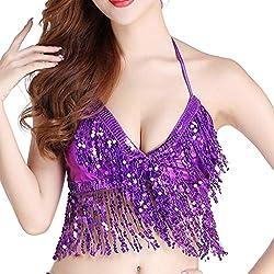 Belly Dance Costume Sequin Tassel Top In Purple