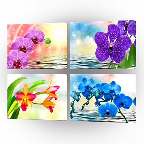VVOVV Wall Decor - Canvas Print Wall Art Painting Colorful Butterfly Orchid Flowers With Reflection In Water Poster Prints Phalaenopsis Picture Home Decor Modern Giclee Stretched And Framed Artwork (Orchid Picture Phalaenopsis)