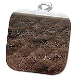3dRose TDSwhite – Rock Photos - Planet Surface Mars Rocks Science - 8x8 Potholder (phl_281907_1)