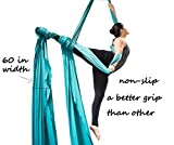 F.Life Aerial Silks for Aerial Acrobatic Dance 60in Wide (10 Yards) with The Equipment,Guide