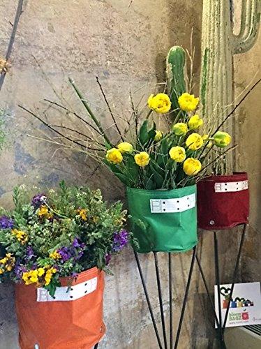 BloemBagz Classic planter 19 litros / 5 galones. Una maceta Textile para sus plantas Color: Peppercorn: Amazon.es: Jardín