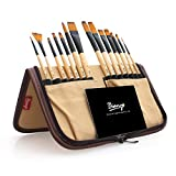 Bianyo Paint Brushes-14 PCS Nylon Hair Brush for Oil,Acrylic&Watercolor Painting,Handy Carrying Case by