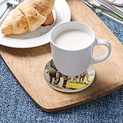 LoveBea Autumn Grass Elephant Art Coasters, Protection for Granite, Glass, Soapstone, Sandstone, Marble, Stone Table - Perfect Drink Coasters,Round Cup Mat Pad for Home, Kitchen Or Bar