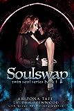 Soulswap (Twin Souls Trilogy Book 2)