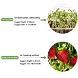 LED Grow Lights 1000W, WILLS Cree COB Full Spectrum Grow Lights for Indoor Plants Hydroponic Greenhouse with Thermometer Humidity Monitor, Adjustable Rope