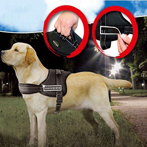 Harukokoro(TM)Dog Walking Harness for Large/Medium/Small Dog-XL