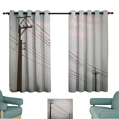 WinfreyDecor Bedroom windproofcurtain Birds on Power line Cable Against Blue Sky Privacy Protection 55