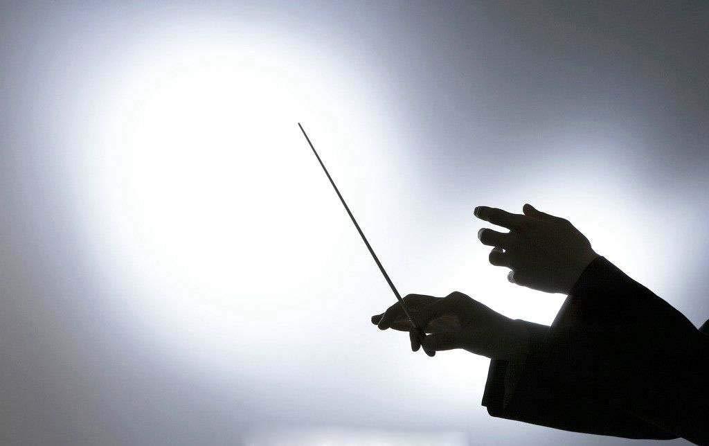 Music Baton Orchestra Baton Band Conducting Baton with Tube Sleeve (Rosewood Handle) by MOREYES (Image #7)