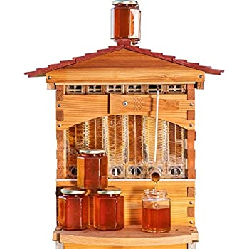 Official Flow Hive Classic Cedar 6 Frame - Langstroth Style Beehive Featuring Our Patented Flow Tech, Suitable for Beginners & Experienced Beekeepers
