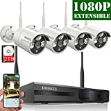 2018 White Wireless Camera System (Full HD 8 Channel 1080P System+ 4Pcs 1080P Cameras + 2TB HDD) Review