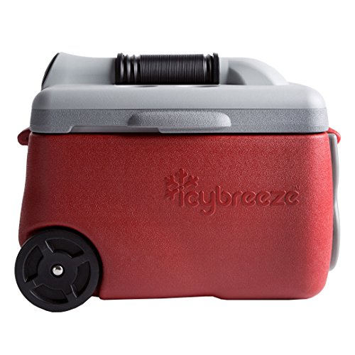 IcyBreeze Cooler Chill Package | No Battery, Direct Power Unit | Ultimate Stationary Package (Red, 12V Car Charger)