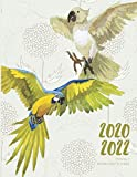 2020-2022 Three 3 Year Planner Watercolor Parrot Monthly Calendar Gratitude Agenda Schedule Organizer: 36 Months Calendar; Appointment Diary Journal ... Notes, Julian Dates & Inspirational Quotes