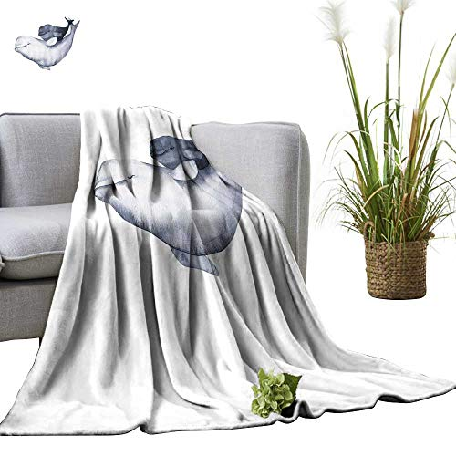 - YOYI Single-Sided Blanket Beluga Whale Dolphin Paint painte realisti Isolate on White for Bed & Couch Sofa Easy Care 60