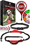 Dog Leash For Large Dogs Review and Comparison
