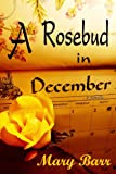 A Rosebud in December