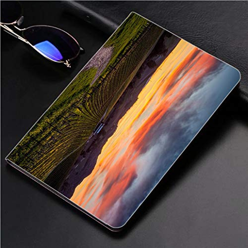 - Compatible with 3D Printed iPad Pro 10.5 Case Colorful Sunset Over a Napa California Vineyard 360 Degree Swivel Mount Cover for Automatic Sleep Wake up ipad case